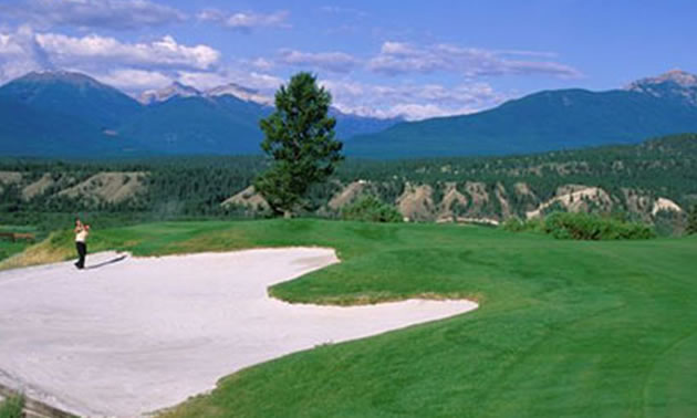 Picture of Radium Hot Springs, The Springs course.
