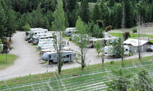 Twin Lakes RV Resort.