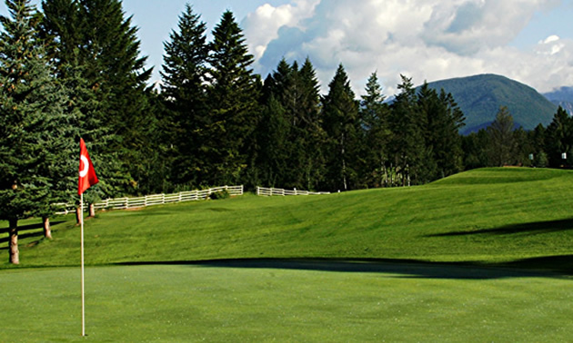 Green at Edgewater Hilltop Golf Course with pine trees in distance.