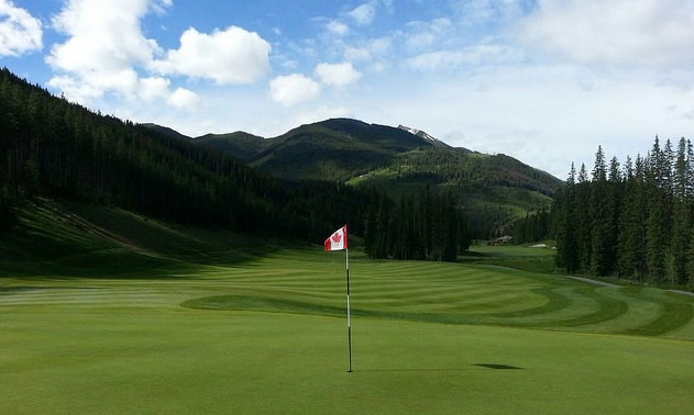 An example of a well kept green at Greywolf Golf Course.