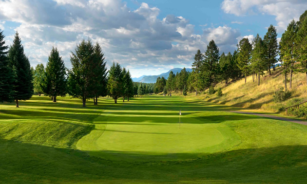 Fairway at Windermere Valley Golf Course with scattered pine trees in background.